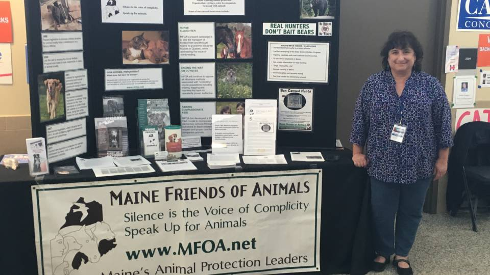 Mfoa Attends 2016 And 2018 Democratic Conventions Maine Friends Of
